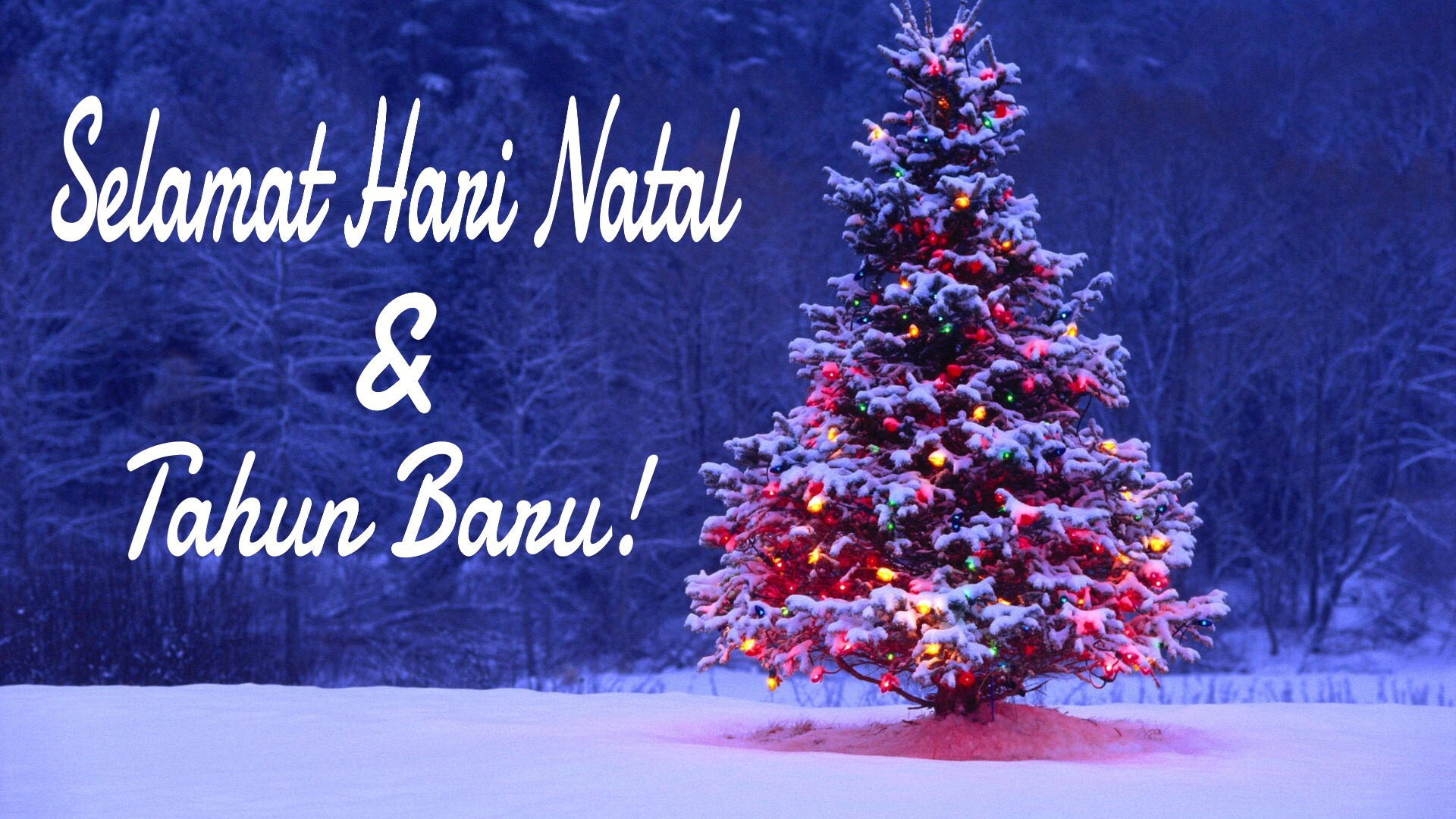 Zalig Kerstfeest En Een Gelukkig Nieuwjaar